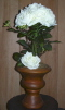 Where to rent FLORAL, WHT ROSES TOPIAR W URN in White Oak TX
